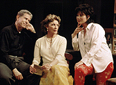 Tony Roberts, Linda Lavin,and Michele Lee in Charles Busch'sThe Tale of the Allergist's Wife(Photo: Joan Marcus)