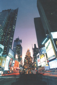 The 1999 tree in Duffy Square