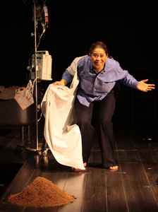 Anna Deavere Smith in Let Me Down Easy