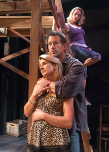 Erin J. O'Brien, James Denton, and Liz Vital