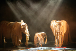 A scene from Elephant