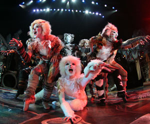 A scene from Cats (© G Creative)