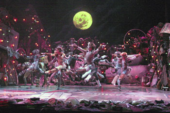 The cast of Cats at the Walnut Street Theatre(Photo © Mark Garvin)