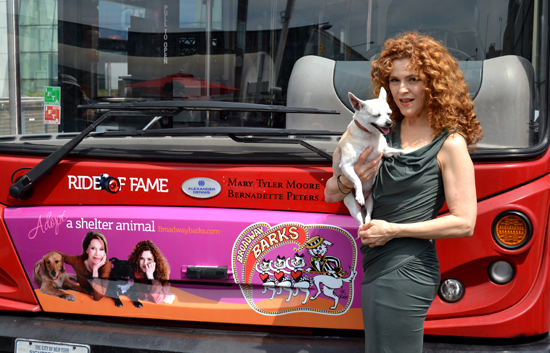 Bernadette Peters and chihuahua Chachi present Gray Line New York's Broadway Barks-themed red double-decker tour bus