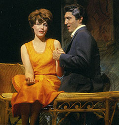 Elizabeth Allen and Sergio Franchiin Do I Hear a Waltz?(Photo from Broadway Musicals:The 101 Greatest Shows of All Time,Black Dog & Leventhal Publishers)